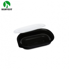 Eco friendly plastic disposable small bento lunch food packaging box